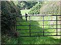 SJ5574 : Start of footpath from Beech Lane to Kingsley by Gary Rogers