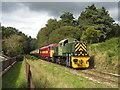SO6106 : Dean Forest Railway near Whitecroft by Gareth James
