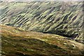 SD8685 : West Duerley Pasture and Bank Gill valley by Alan Murray-Rust