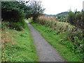 NJ2844 : The Speyside Way near Craigellachie by Dave Kelly