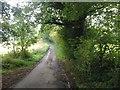 TQ8750 : Park Road, Platts Heath by Chris Whippet