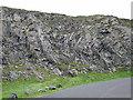 NX0053 : Former Quarry by Anne Burgess