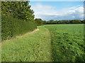 TL1335 : Path near Meppershall church by Humphrey Bolton