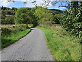 NX9291 : Road to Puddockhole and Netermains near Redbrae Wood by Peter Wood
