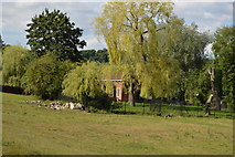 SU8696 : Pumping station in trees by N Chadwick