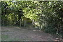 SU8596 : Footpath enters the woods by N Chadwick