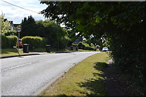 SU8596 : Coombe Lane by N Chadwick