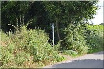 SU8596 : Footpath off Huntshill Lane by N Chadwick