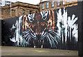 NS5864 : Tiger mural at Customhouse Quay by Thomas Nugent