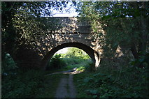 SP4408 : Thames Path goes under Swinford Bridge by N Chadwick