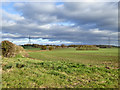 TL1465 : Farmland east of Cage Lane by Robin Webster
