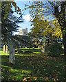 TL6370 : Across Fordham churchyard in autumn by John Sutton