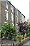 TL4558 : Terrace, Maids Causeway by N Chadwick