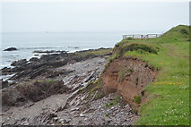 SX5048 : Beach at Wembury Point by N Chadwick