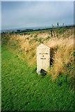 SW6836 : Old Milestone by Ian Thompson