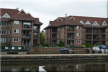 TL4659 : Quay on the Cam by N Chadwick