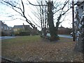 TQ0182 : Green on Wood Lane Close, Iver Heath by David Howard