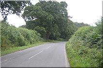 TQ3129 : Borde Hill Lane by N Chadwick