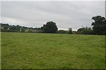 TQ3130 : Pasture, Balcombe by N Chadwick