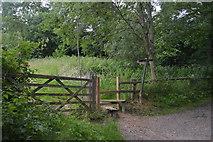 TQ3329 : Footpath junction by N Chadwick