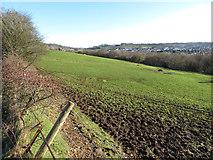 SS9983 : Roadside field in Brynna by Gareth James