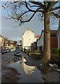 ST5775 : Reflection on Greendale Road by Derek Harper