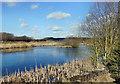 SE4223 : Reclaimed colliery slurry ponds by derek dye