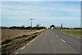 TL4391 : B1093 Manea Road by Robin Webster