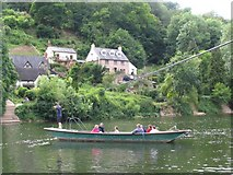 SO5615 : Rope Ferry at Symonds Yat by Pam Brophy