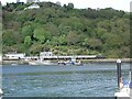 SX8752 : Dartmouth Higher Ferry and Torbay Railway train by David Stowell