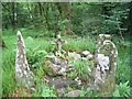 W2076 : Ogham stones near Baile Mhic �re (Ballymakeery) by Tom Pullman