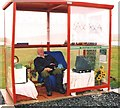 HP6309 : Unst Bus Shelter by Anne Burgess