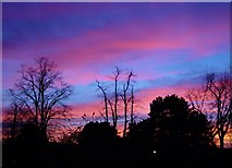TQ1577 : Sunset over Osterley - Xmas Day 2002 by pete traill