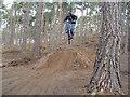 TL1141 : Dirt jumper on dirt jumps at Rowney Warren Woods by James Bentall