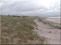 SH3567 : Aberffraw sand dunes, Anglesey by David Rayner