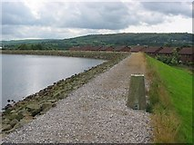 SJ9695 : Godley Reservoir by Richard Webb