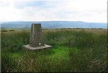 SD7323 : Rushy Hill by Richard Webb