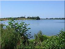 TM1535 : Alton Water Reservoir by Ed Maxwell