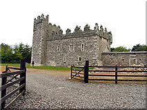 S8809 : Coolhull Castle by Pam Brophy