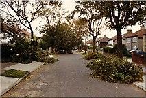 TQ4573 : Wyncham Avenue October 1987 by rafflesbear