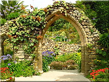 SV8914 : The Abbey Garden, Tresco by Darren Smith