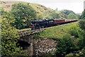 NZ8202 : North York Moors Railway near Thomason Foss by Andy Beecroft