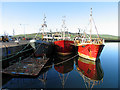 Q4400 : Three Ships: Dingle Harbour by Pam Brophy