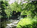 TL4651 : River Granta - Shelford recreation ground by David Lamkin