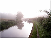 SJ9051 : Early morning sun and mist on the Caldon Canal by Andy Beecroft