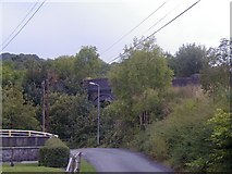 SN7012 : Railway Bridge, through trees by Hywel Williams