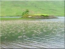 NM6330 : Crannog, Loch Sguabain by Mick Garratt