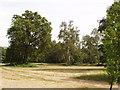 TQ0182 : Langley Park, Iver Heath, near Slough by David Hawgood