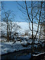NZ3274 : Sledging field Holywell Dene by Christine Westerback