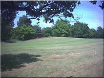 TQ2271 : West end of Caesar's Camp, Wimbledon Common. by Noel Foster
